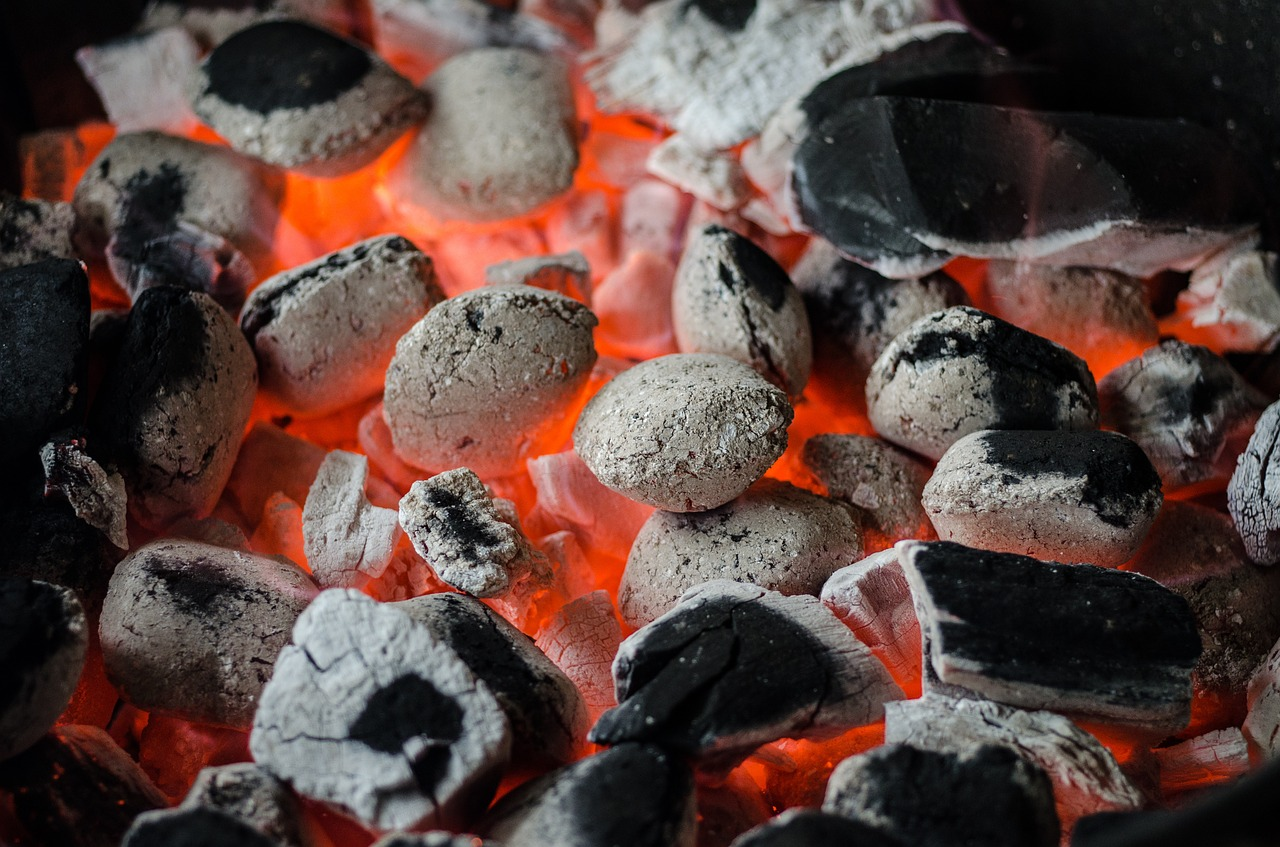 What's the Best Charcoal Grill